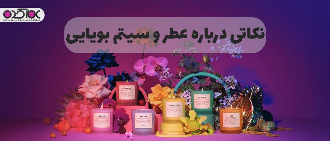 نکاتی در رابطه با عطر و سیستم بویایی
